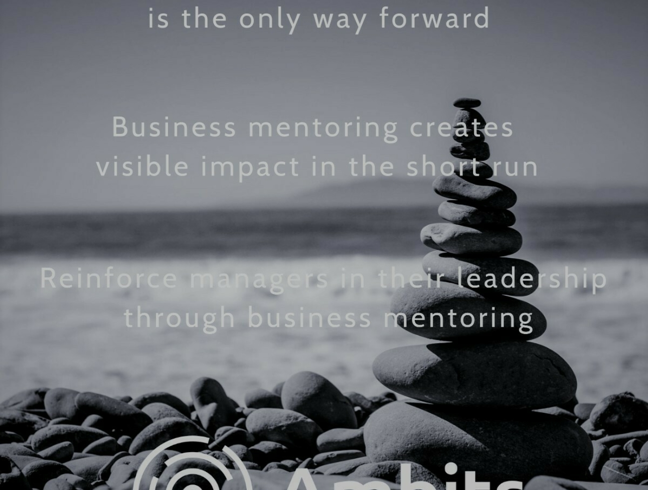 Business Mentoring is the way forward in leadership development