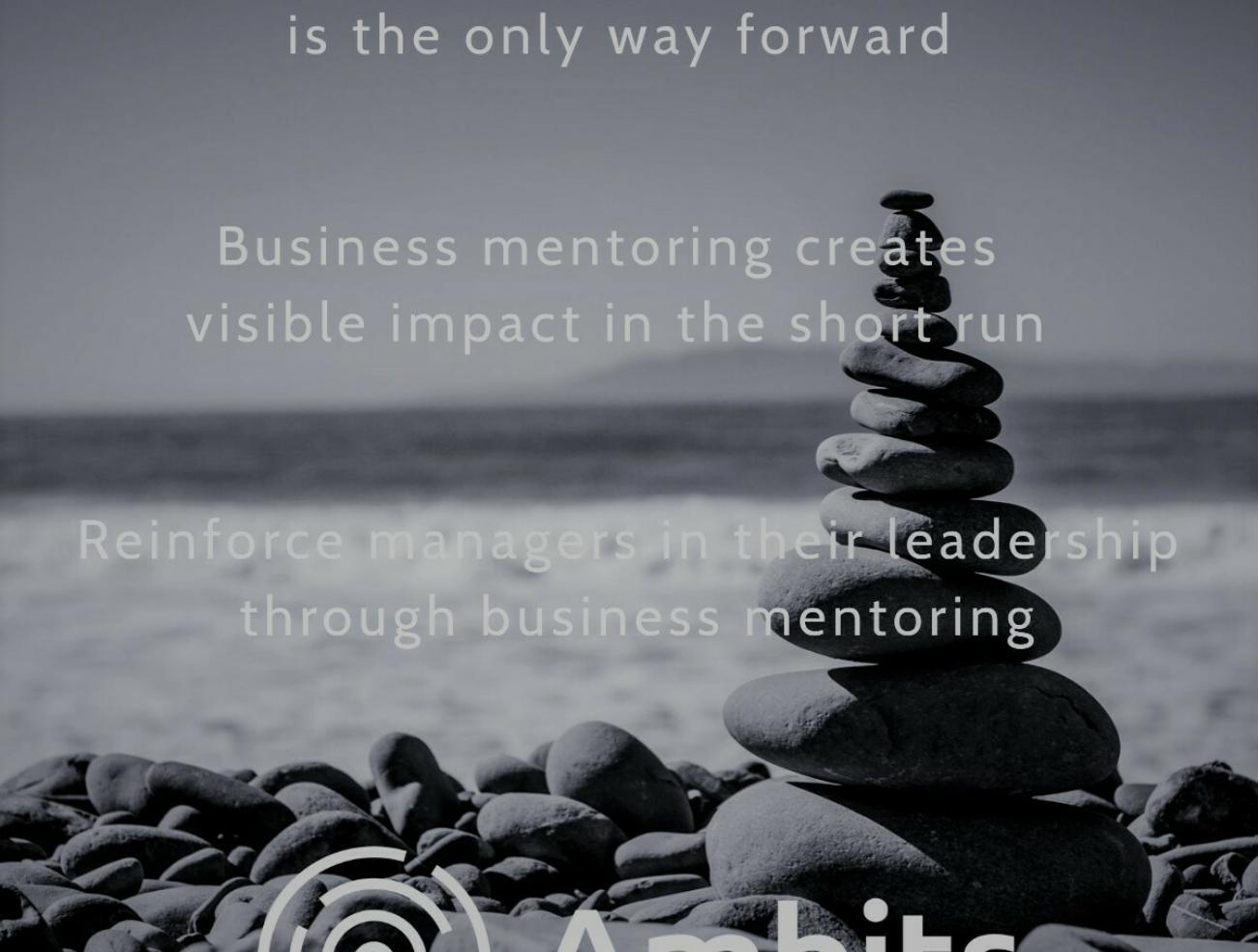Business Mentoring is de weg vooruit in leiderschapsontwikkeling