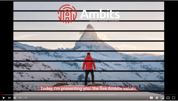 Ambits 5 values still